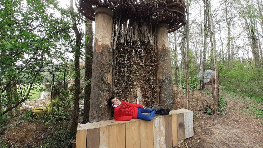 des trons taillé qui cache des mises en scène en bois derrière