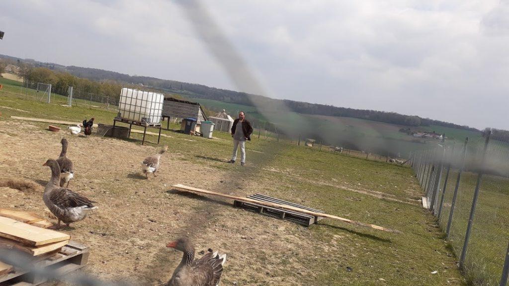un enclos destiné aux volailles